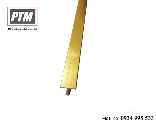 Nẹp chữ T 10mm - MT10